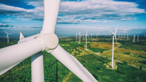 $1 billion Queensland wind farm to go ahead