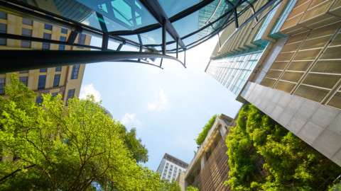 Report launched for Australian green infrastructure opportunities