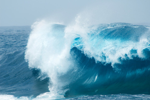 Wave energy gets $2 million support