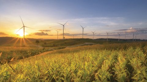 Granville Harbour Wind Farm hits new milestone
