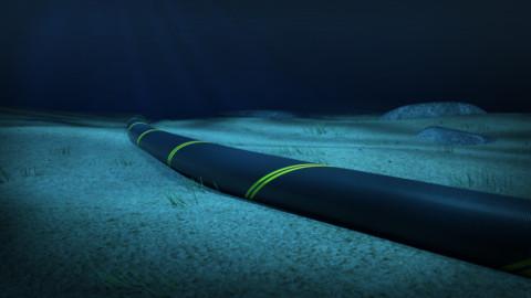 Additional Bass Strait interconnection could transform NEM