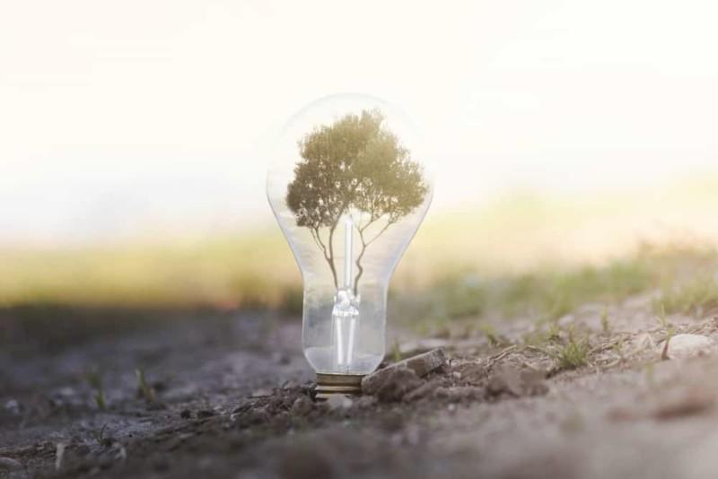 Clean energy bulb