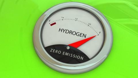 Study into Pilbara green hydrogen plant