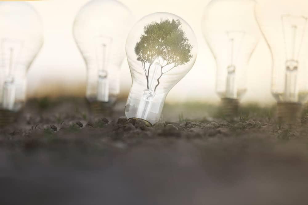 Electrolytic water splitting a breakthrough for renewables