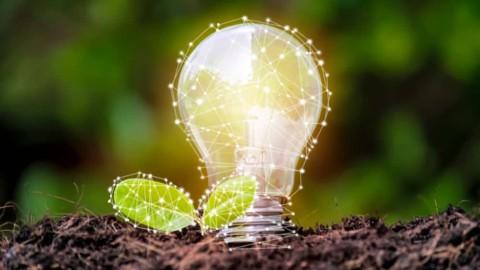 Award-winning renewable energy program announces new grant recipients