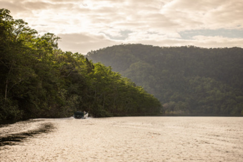 Daintree microgrid feasibility study delivered