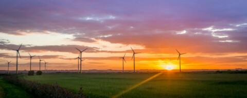 Neoen, CleanCo PPA unlocks wind farm build