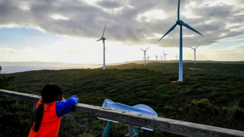 Wind and solar power predicted by AI tech